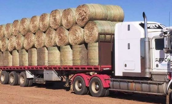 "Hey Australia! Its time to ""Buy Another Bale�"
