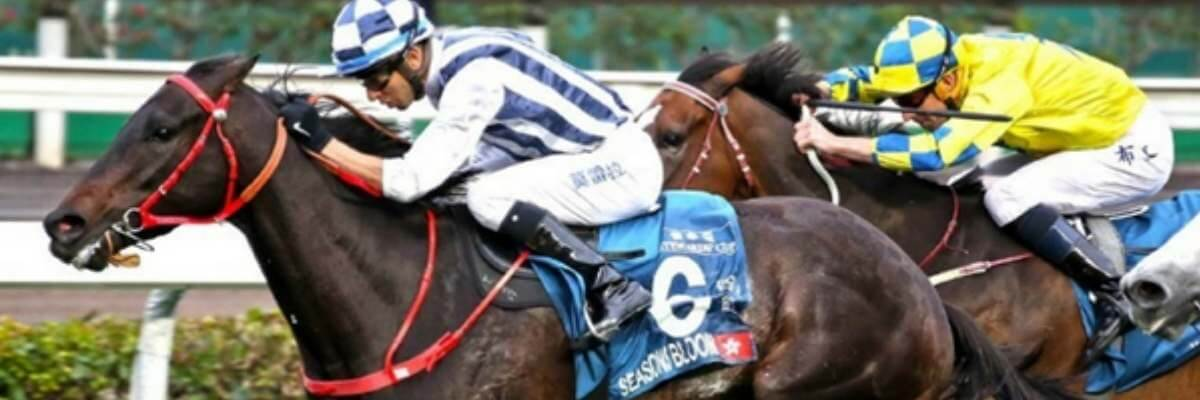 Queensland Bred Blooms in Hong Kong Group One