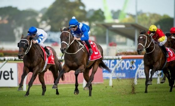 Winx Returns With All Eyes on Cox Plate