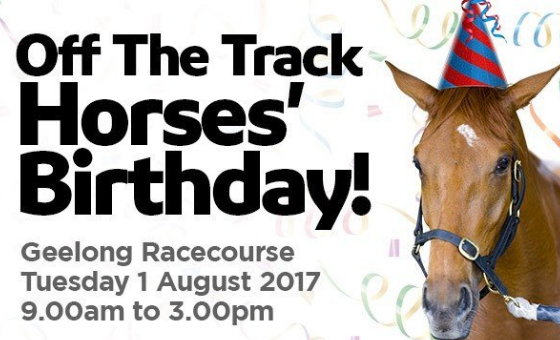 Horses Birthday Celebrations